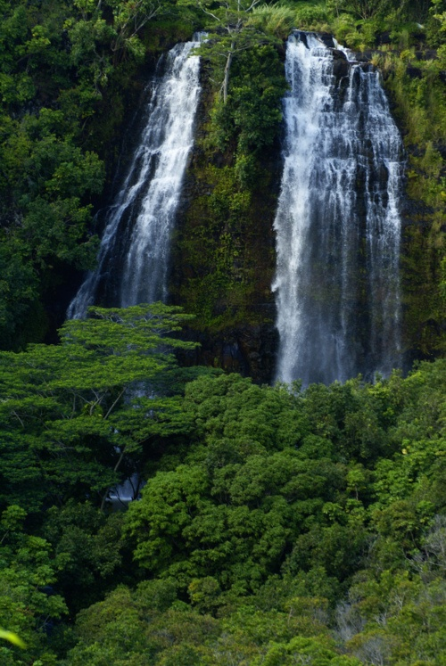 Opaekaa Falls, Kauai, Hawaii   Kauai is extremely green, lush, and waterfalls are abundant....beautiful.: Destinations Traveled, Favorite Places, Opaekaa Falls, Beautiful Places, Places I D, Dream Vacations, Kauai Trip