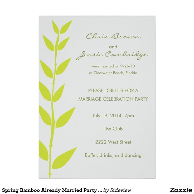 Wedding Invitation Wording Already Married Couple