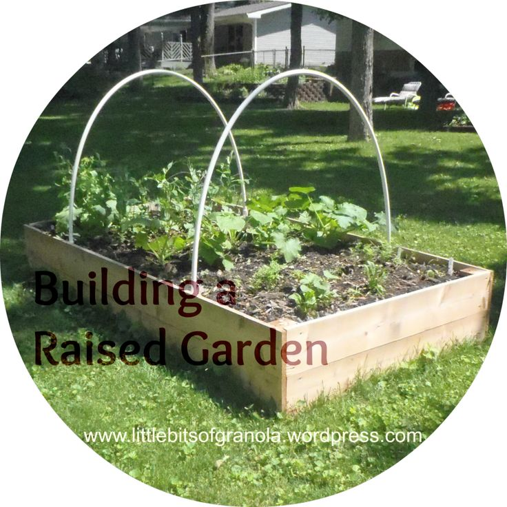 Build a raised garden bed for planting your own veggies or herbs this spring!  It is so easy and this tutorial for building a raised vegetable garden include a materials list and cut list.  -- by Little Bits of Granola