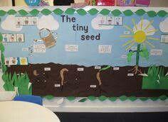 Garden wall display classroom
