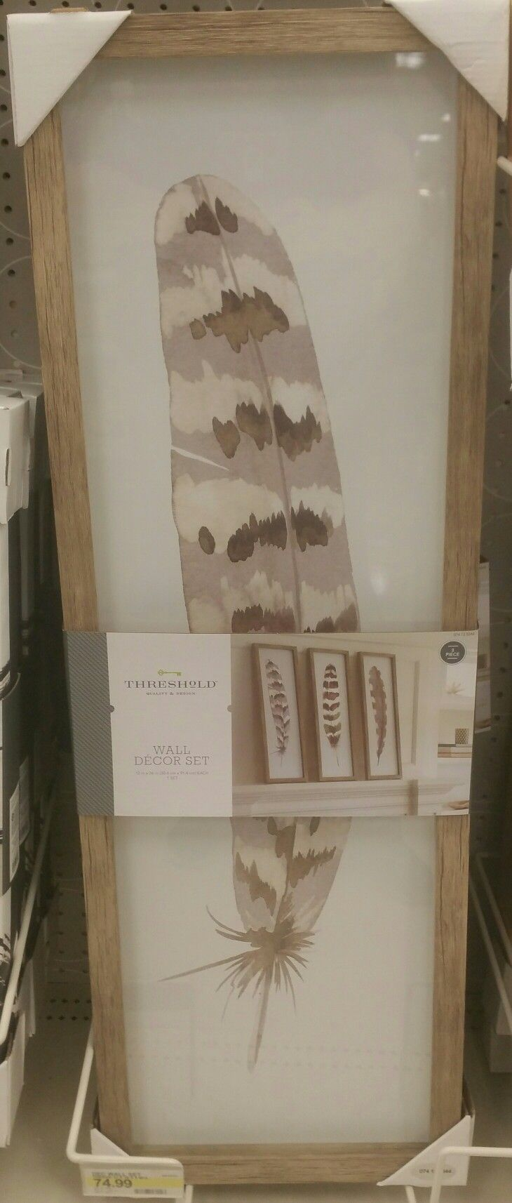 Set of 3 very large framed feathers has a watercolour look.  Target & Hobby Lobby. 11/17.
