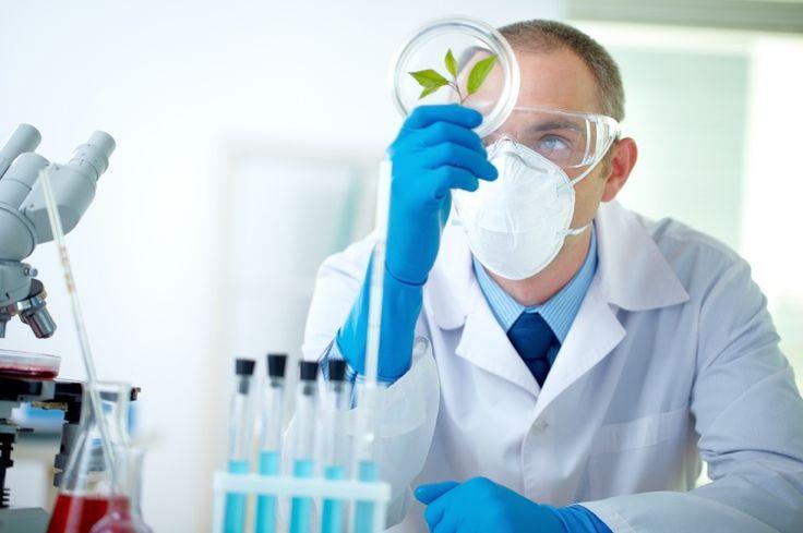 trabajo-biologo.jpg (849×565)