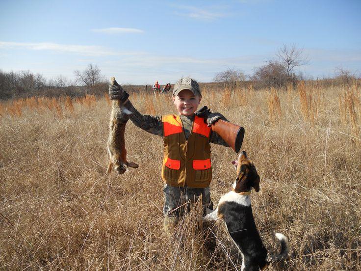 Beagle Hunting   Beagles Hunting Rabbits