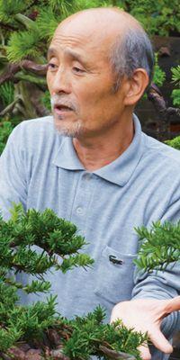 Bonsai Creator: Special intyerview Takeo Kawabe (http://www.bonsai-jp.com/)