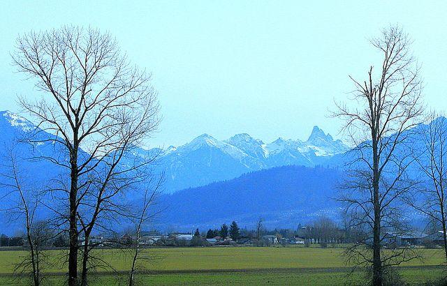 AN AUTUMN FRASER VALLEY, BC   Flickr - Photo Sharing!
