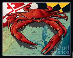 Image result for maryland CRAB MAILBOX COVER