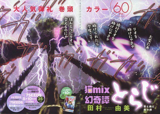 『猫mix幻奇譚とらじ/雷と綱と庭小僧』