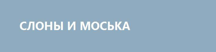 СЛОНЫ И МОСЬКА http://rusdozor.ru/2016/10/12/slony-i-moska/  Лента поражается смелости Авакова, наехавшего на Олланда по поводу выполнения минских соглашений. Да и выставление Киевом «условий» для участия в ужине «нормандской четверки» в Берлине также впечатляет своей наглостью.  А ларчик просто открывается, причем в том же месте, о ...