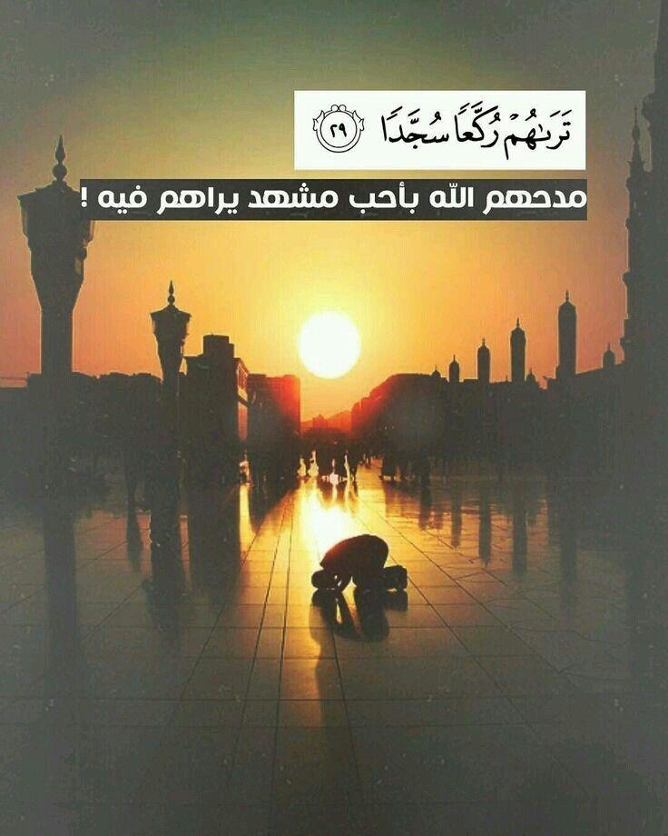 Pin By ميمي On آيه ومعنى Quran Book Islamic Quotes Quran Quran Verses