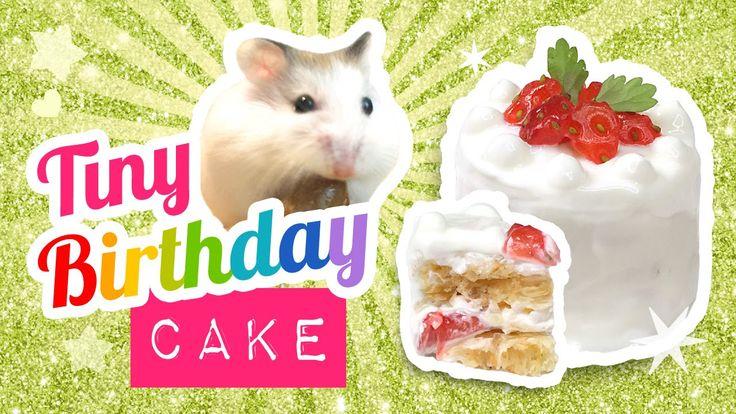 Cesar Millan Dog Birthday Cake
