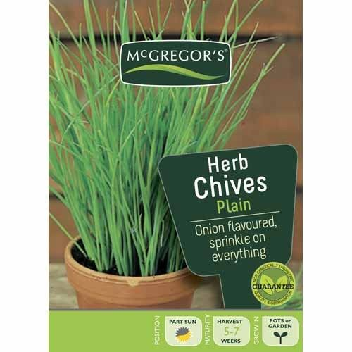 Plain Chives  Herb Seed