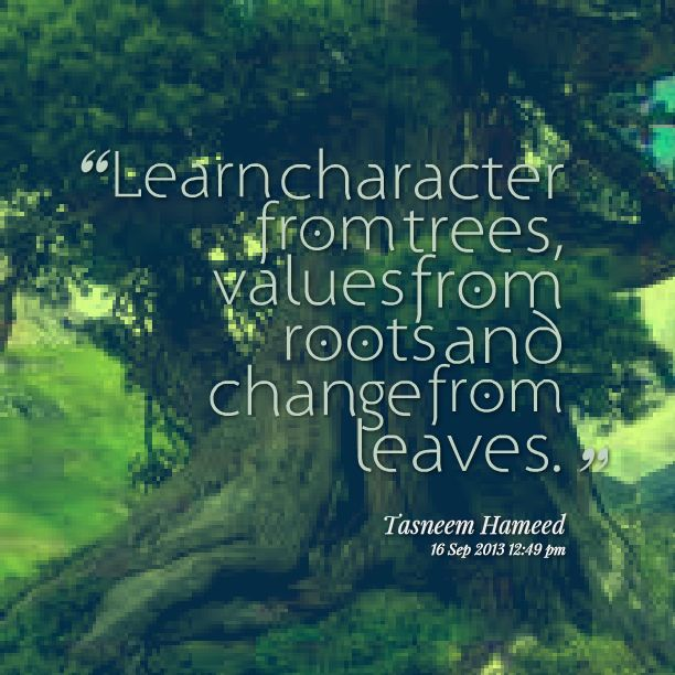 Learn Character. #eatsleeptrees                                                                                                                                                     More