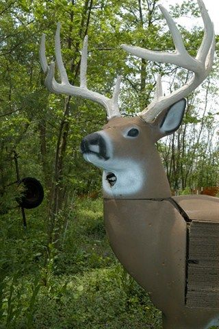 Bowhunters' 3-D Deer Targets Give Chickadees a Home