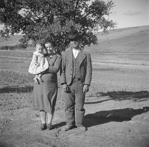 Alentejo, 1940 by Artur Pastor