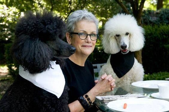 A civilized luncheon in the garden such manners does your fur friend behave at the table???