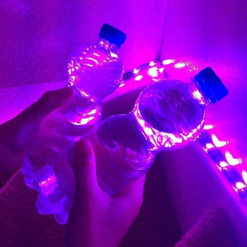 late night fun  We Heart It  purple neon and