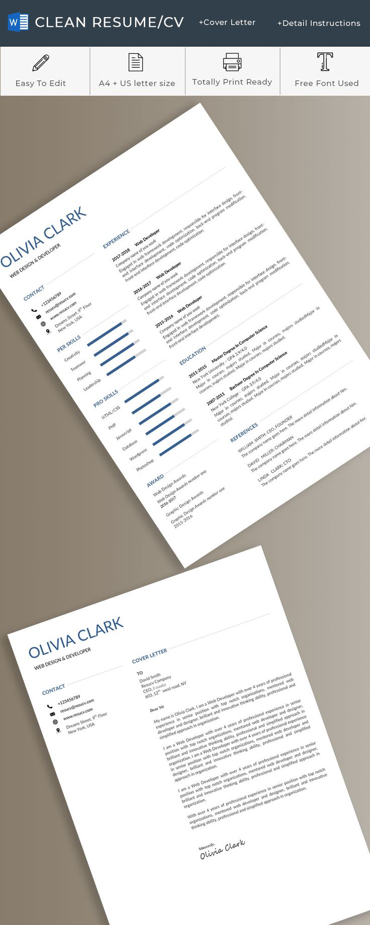 a beautiful and elegant resume tempaltes  with word format