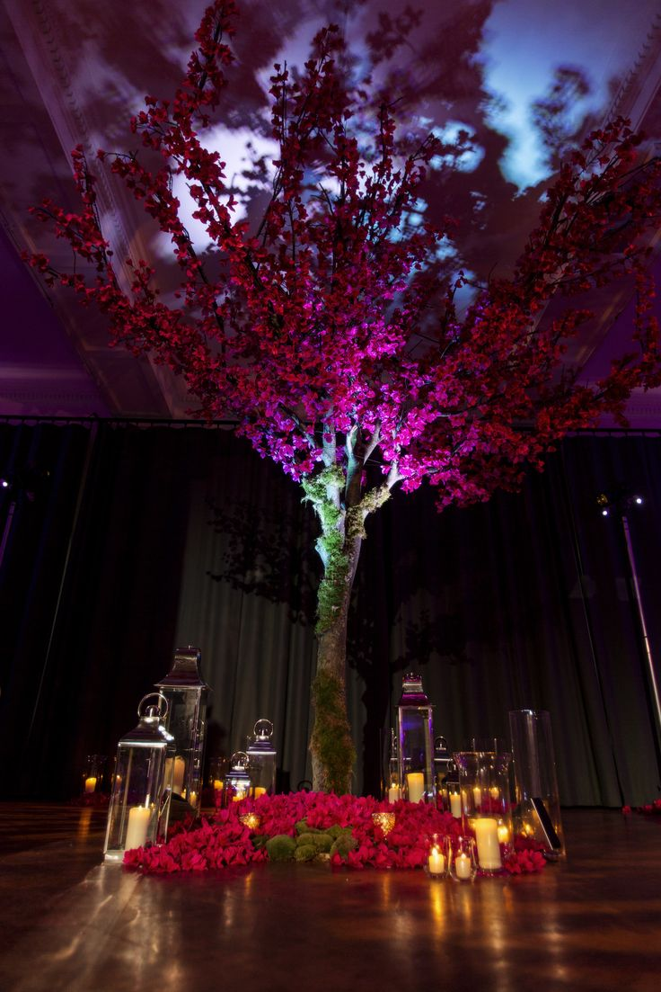Wedding Tree at The Lindley Hall. Royal Horticultual Hall. Central London Wedding Venue. Event Styling.