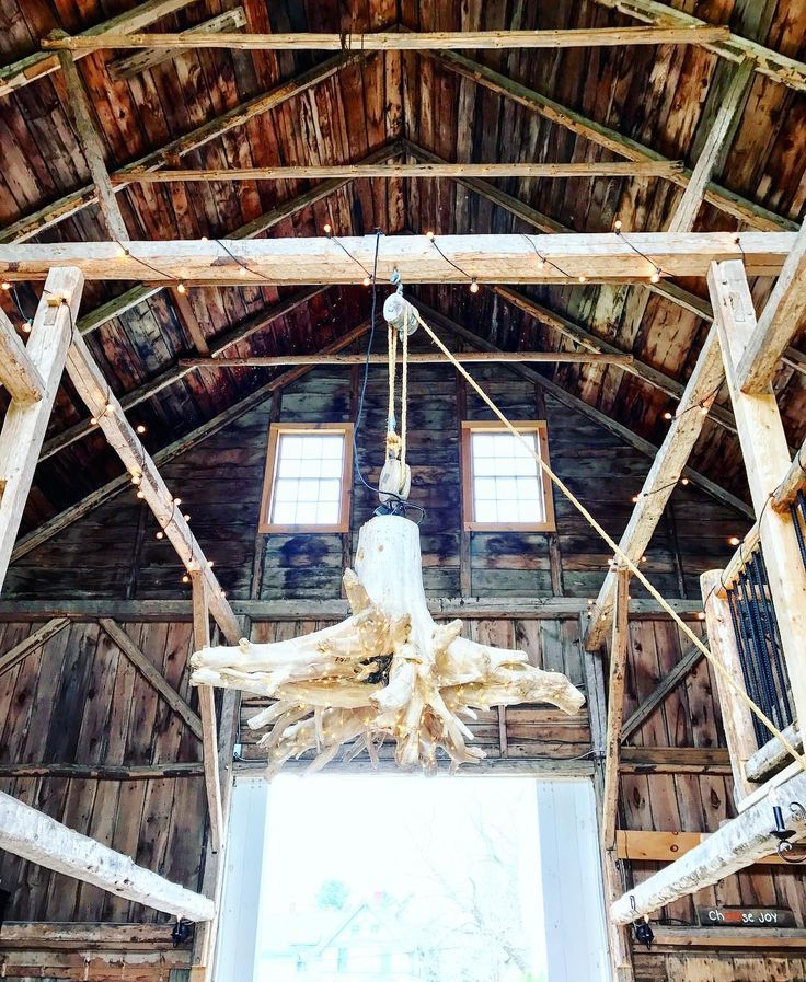 """""""I'm gonna swing--from the chandelier""""  Sia said it first but she forgot to mention the part about it being a #driftwoodchandelier... #livewellfarm"""