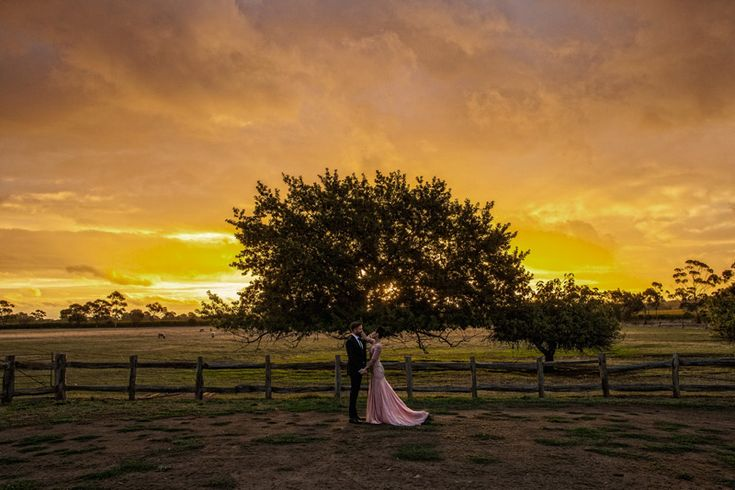 {wedding} ~ Karen & Armin ~ McLaren Vale   Brisbane Wedding Photographer…