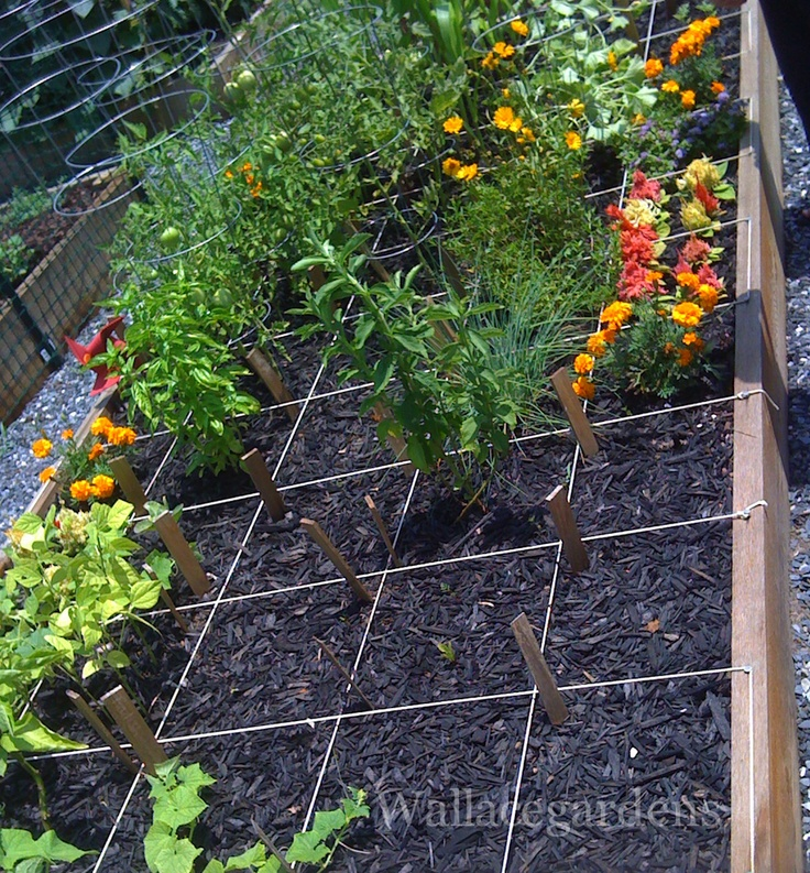 one of the 76 plots at harvest farm white street park community garden suwanee
