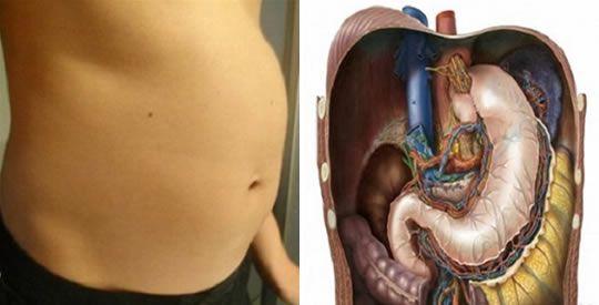 Le cause del mal di stomaco frequente, e come alleviarlo   Rimedio Naturale