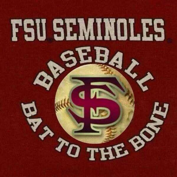 I Love Florida State Baseball!