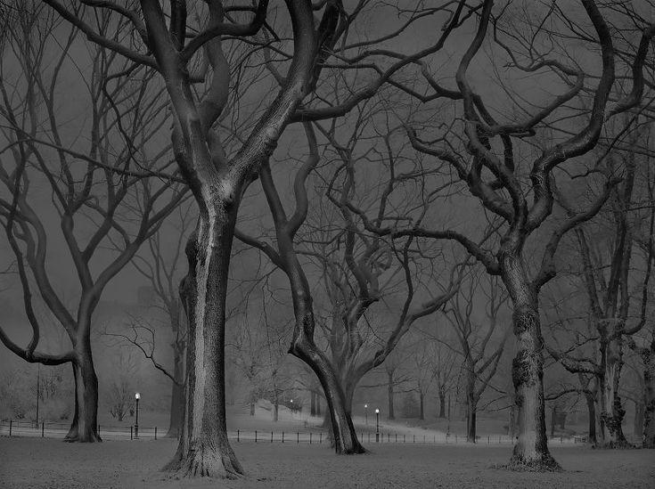 Un photographe souffrant d'insomnie saisit des photos ensorcelantes de Central Park lorsqu'il n'y a personne