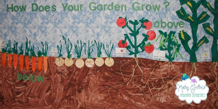 Kathy Griffin's Teaching Strategies: Spring, Plants, and Garden Bulletin Board