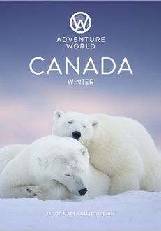 Experience the extraordinary with a Winter in Canada