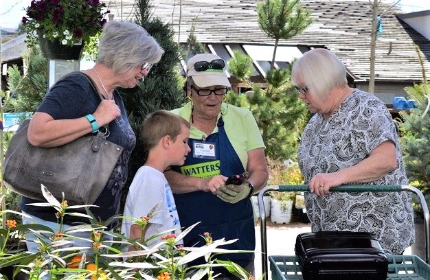 Plant experts roam the garden center helping customers