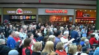 Devonshire Mall Flash Mob Windsor Ontario December 2010, via YouTube.