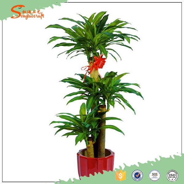 120 cm High quality artificial Dracaena Fragrans Massangeana plant, View cheap artificial plants, Songtao Artificial Plant Product Details from Guangzhou Songtao Craft Artificial Tree Co., Ltd. on Alibaba.com