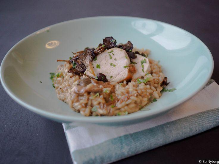 Risotto med stekt sopp og kylling