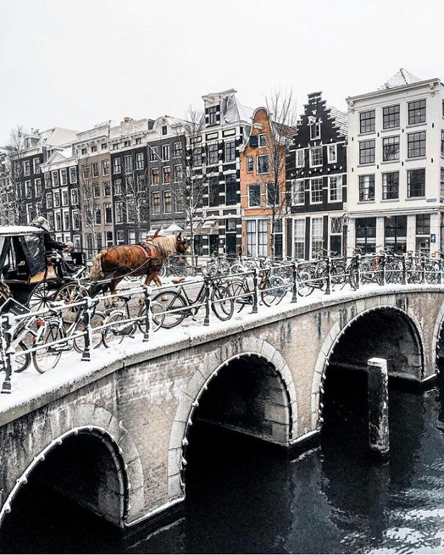 Velarus bridge-Amsterdam The Netherlands