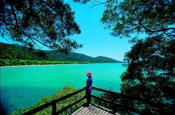 Daintree Rainforest, Cape Tribulation and Rainforest Habitat Wildlife Sanctuary Day Tour - Lonely Planet
