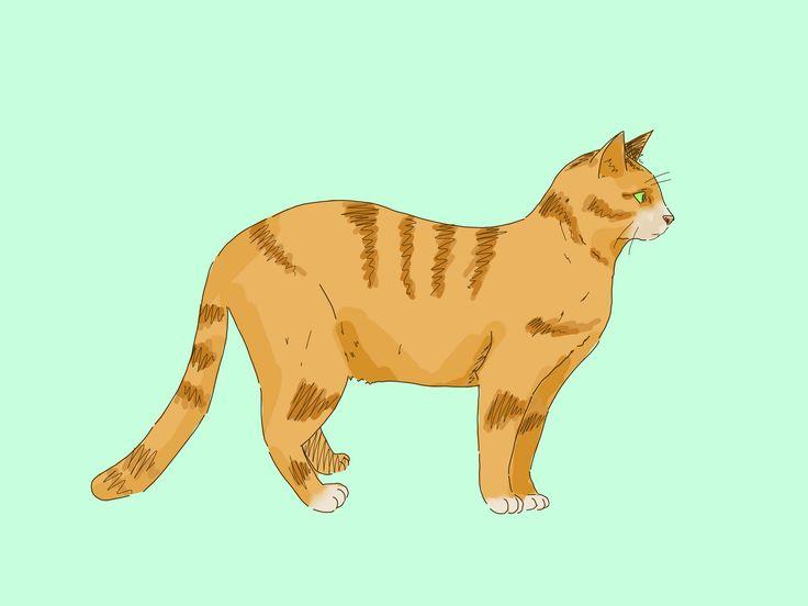 Eine Katze zu zeichnen ist einfach. Während es viele Möglichkeiten gibt, zeigt dir diese Anleitung, wie man eine Katze im Cartoon-Stil und im realistischen Stil zeichnet. Von hier aus solltest du dich in der Lage fühlen, deine Fä...