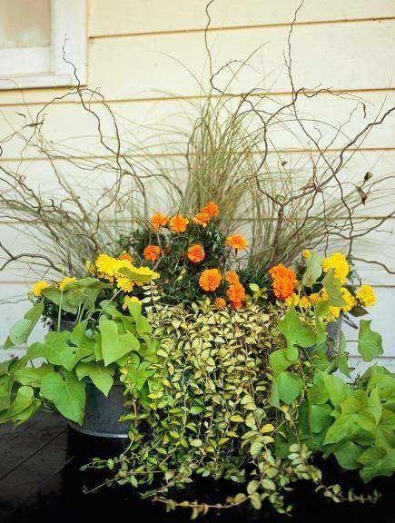 311 Best Container Gardens Images On Pinterest Garden