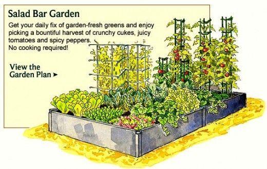 Vegetable Garden Planner Layout Design Plans For Small Home Gardens Gardens Small Homes
