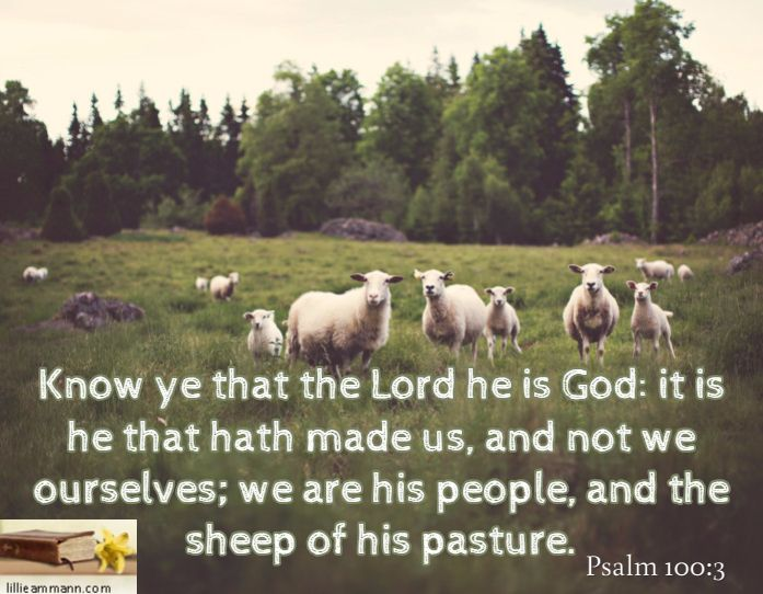 Know ye that the Lord he is God: it is he that hath made us, and not we ourselves; we are his people, and the sheep of his pasture. / Psalm 100:3