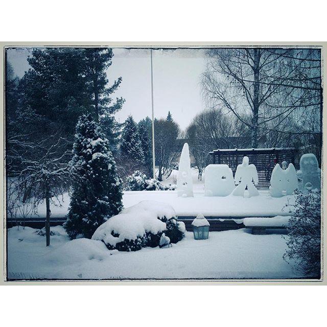 Lumesta puutarhalle peitto. #lumi #talvi #puutarha #snow #winter #garden