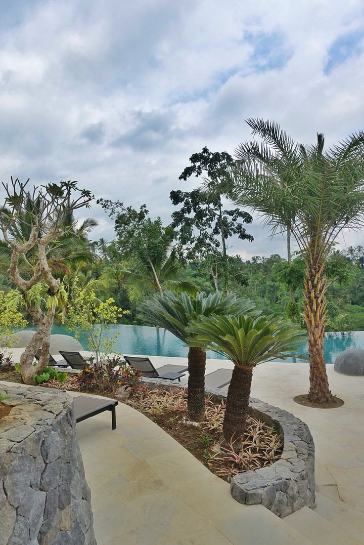 Pool side and landscaping at Padma Ubud. #MilesHumphreysArchitect