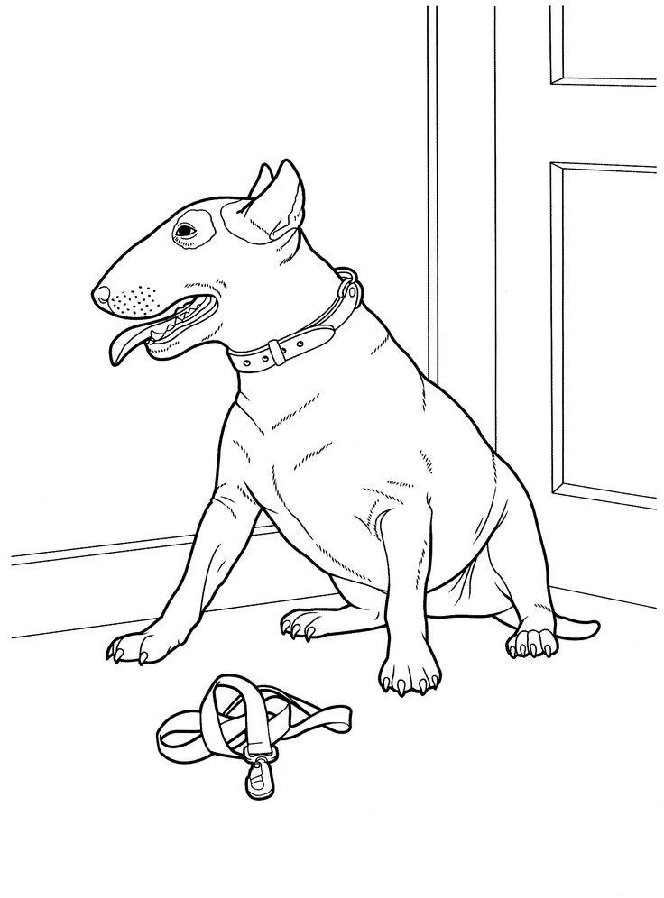 113 Best Images About Favorite Dog Colouring Pages On