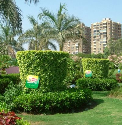 Lipton Green Tea Ambient Ad