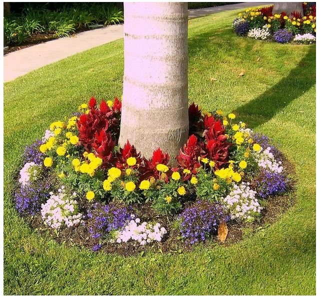 Add a flower bed around tree curb appeal pinterest for Small trees for flower beds