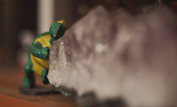 Go Turtle, Go!