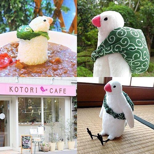 気になる鳥キャラ「ふろしき文鳥」のカレー ことりカフェ吉祥寺に登場!