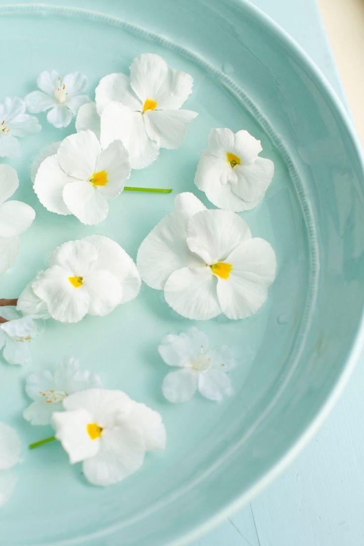 Flores para apreciar la belleza de lo que nos rodea este #VIERNES ;) www.mifabula.com