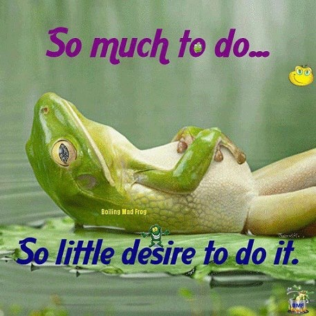 So much to do,so little desire to do it.