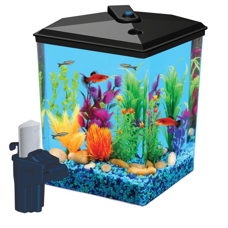 Aqua Culture 2.5-Gallon Corner Aquarium Kit, LED Light and Filter, 12.3 inchL x 9.4 inchW x 11.4 inchH